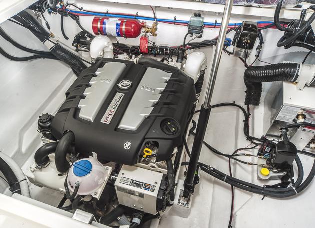 VW-Diesel: Bulliges Drehmoment aus 8 Zylindern. Foto: Dieter Wanke
