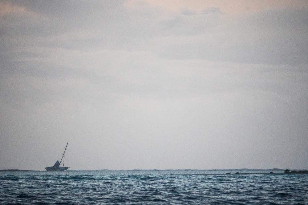 """Volvo Ocean Race: """"Wir sind Schiffbrüchige!"""""""