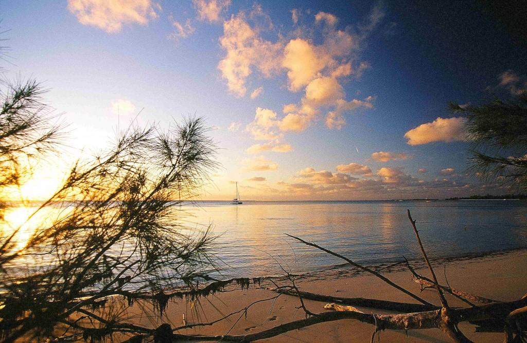 Winter in der Wärme: Teil 3 - Bahamas, Everglades und Kuba