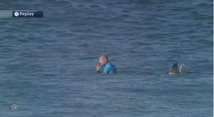 Mick Fanning wartet auf Wellen, der Hai hinter ihm denkt ans Mittagessen