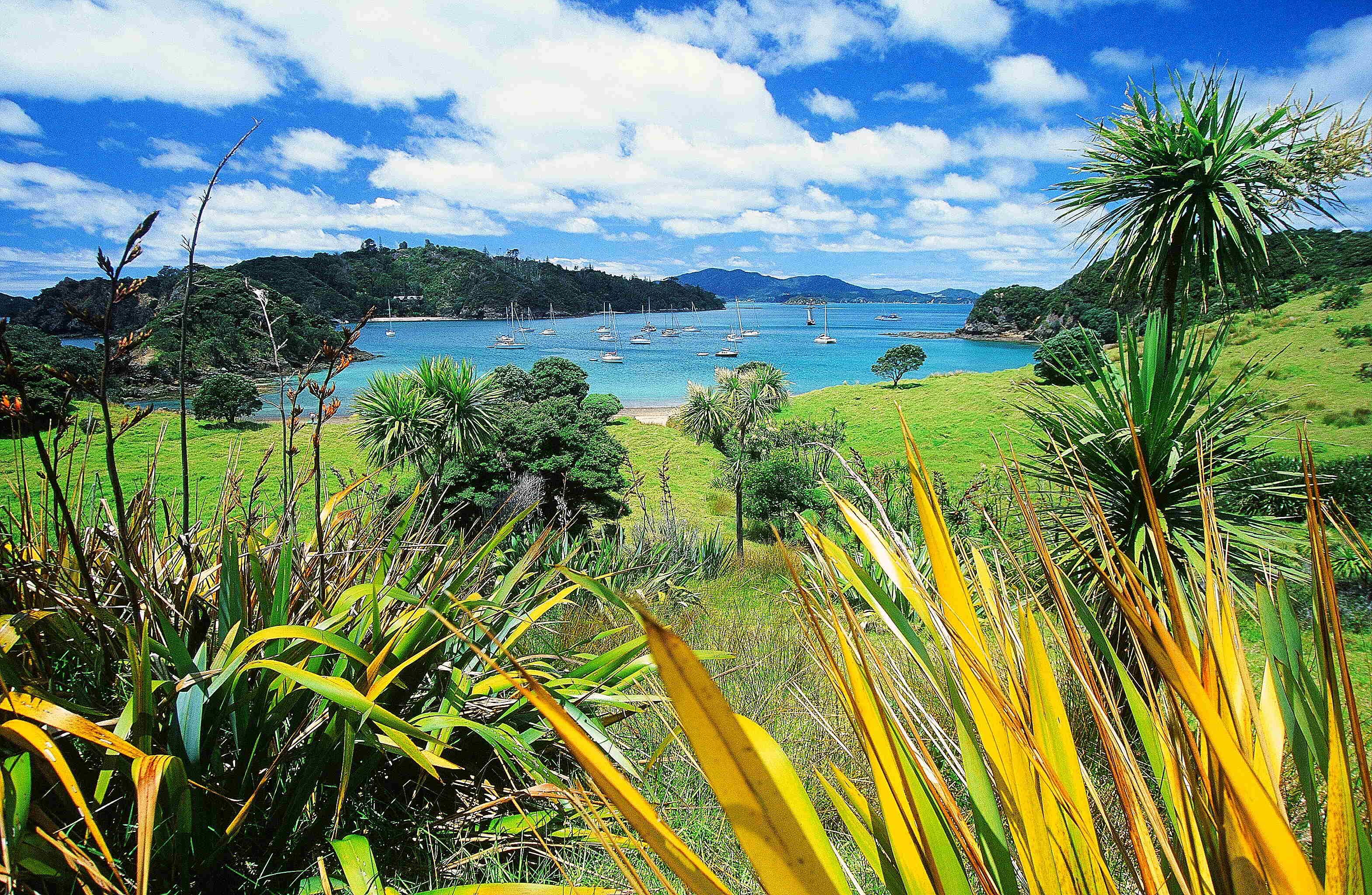 Winter in der Wärme: Teil 6 – Neuseeland und Tahiti