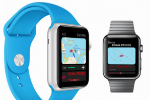 Apple Watch: AIS am Armband